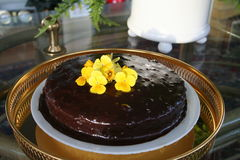Chocoladecake met ganache Stock Foto