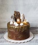 Chocoladecake met gezouten karamel, zeilen en merengue Stock Afbeelding