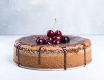Chocoladecake met sappige kersen Stock Foto