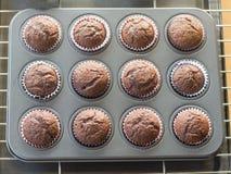 Chocoladecake op dienbladgat Royalty-vrije Stock Foto