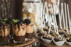 Chocoladedessert met room en braambes wordt bedekt die Stock Afbeelding