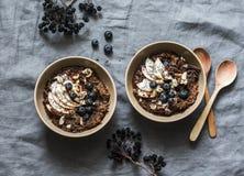 Chocoladehavermeel met appelen en bosbessen - gezond vegetarisch ontbijt op een grijze achtergrond, hoogste mening Vlak leg stock foto's