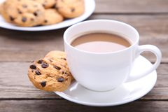 Chocoladekoekjes op plaat en kop van koffie op grijze achtergrond stock foto's