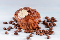 Chocolademuffin stock foto