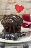 Chocolademuffin met melk Stock Fotografie