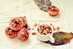 Chocolademuffins met stukken van donkere chocolade en okkernoot, tinti Stock Foto