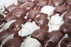 Chocolademuizen Royalty-vrije Stock Afbeelding