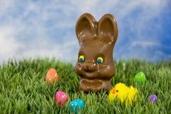 Chocoladepaashaas met kuiken Royalty-vrije Stock Foto's