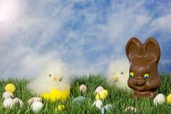 Chocoladepaashaas met Kuikens Royalty-vrije Stock Foto's