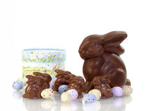Chocoladepaashazen Stock Fotografie