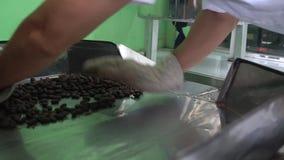 Chocoladeproductie van boon aan bar Het zetten van cacaoboon in machine stock footage