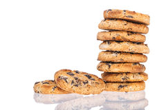 Chocoladeschilferkoekjes Stock Fotografie