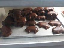 Chocoladevarkens royalty-vrije stock foto