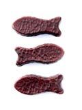 Chocoladevissen die in tegenovergestelde richtingen zwemmen Stock Foto's