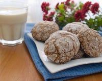 Chocolat Ñookies et lait Images libres de droits