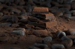 Chocolat avec des haricots d'american national standard de poudre de cacao Image libre de droits