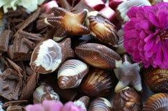 Chocolat avec la fleur Photographie stock