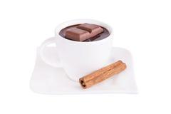 Chocolat chaud avec de la cannelle Photographie stock