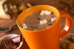 Chocolat chaud avec des guimauves Image libre de droits