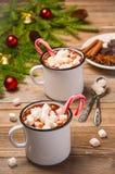 Chocolat chaud avec des guimauves Photos stock