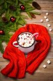 Chocolat chaud avec des guimauves Photos libres de droits