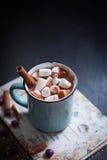 Chocolat chaud avec des guimauves images stock