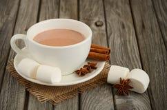 Chocolat chaud avec des guimauves et des épices Photographie stock libre de droits