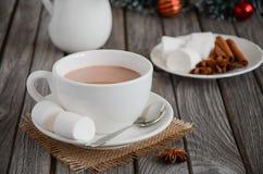 Chocolat chaud avec des guimauves et des épices Image stock