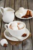 Chocolat chaud avec des guimauves et des épices Photographie stock