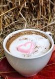 Chocolat chaud avec la guimauve de rose de coeur Photo stock