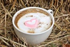 Chocolat chaud avec la guimauve de rose de coeur Photographie stock
