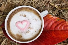 Chocolat chaud avec la guimauve de rose de coeur Photos libres de droits