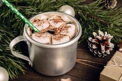 Chocolat chaud avec la guimauve et la paille verte Images stock