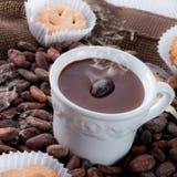 Chocolat chaud avec le biscuit images libres de droits