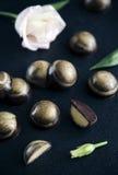 Chocolat de luxe fait main Photographie stock