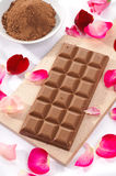 Chocolat du lait et poudre de chocolat Photo libre de droits