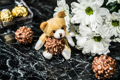 Chocolat et camomille Images libres de droits