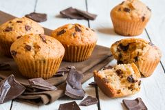 Chocolat fait maison Chip Muffins photographie stock libre de droits