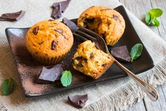 Chocolat fait maison Chip Muffins images stock
