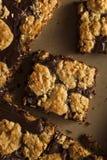 Chocolat fait maison Revel Brownie Bars photographie stock libre de droits