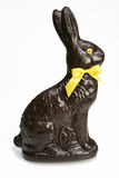Chocolat rabbit Stock Image