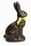 Chocolat rabbit. Isolated on white background Stock Image