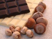 Chocolate. And hazelnuts Royalty Free Stock Image