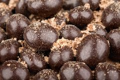 Chocolate balls with crumbs Royalty Free Stock Image