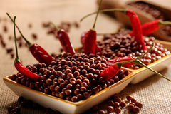 Chocolate balls with red chilli pepper Royalty Free Stock Photos