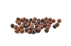 Chocolate balls on a white background. Stock Photos
