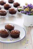 Chocolate banana muffins Stock Photo