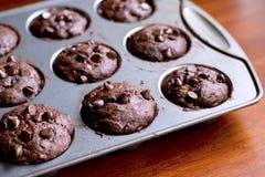 Chocolate Banana Muffins. In cupcake metal tin Stock Photos