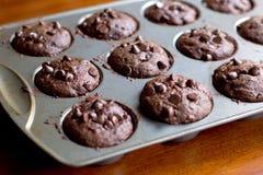 Chocolate Banana Muffins. In cupcake metal tin Royalty Free Stock Photos