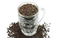 Chocolate barley malt in a beer mug. On a white background Royalty Free Stock Images